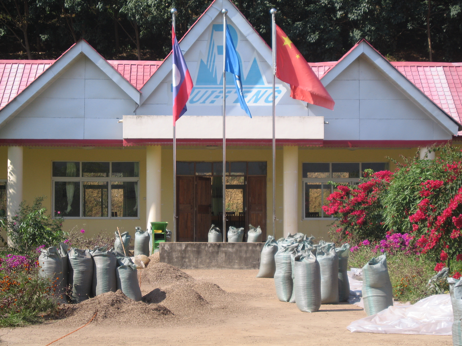 Flags in front building